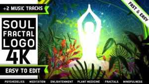 Psychedelic Fractals Logo