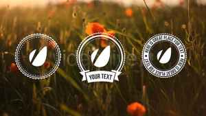Light Vintage // Lower Thirds Pack