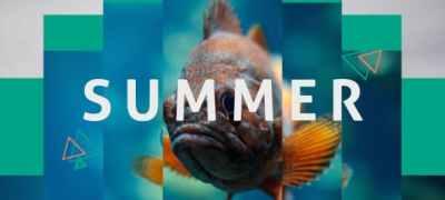 Summer Dynamic Opener