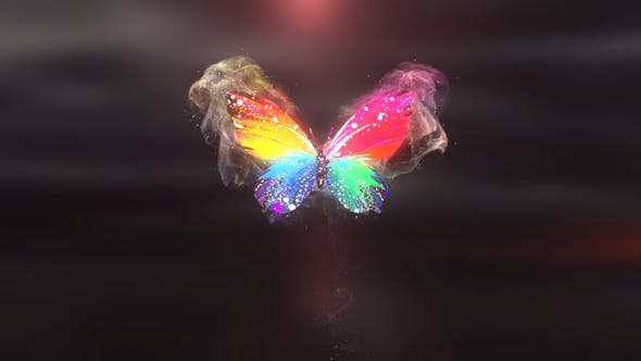 Download Colorful Butterfly Logo Reveal 4K – Videohive