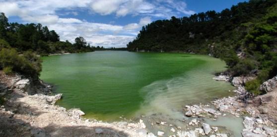 Wai-O-Tapu, Lake Ngakoro