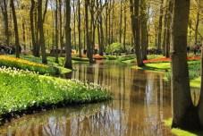 keukenhof-holland-tulips20
