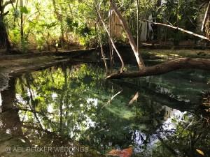 Cenote at Hotel Esencia, Mexico. Ael Becker Weddings