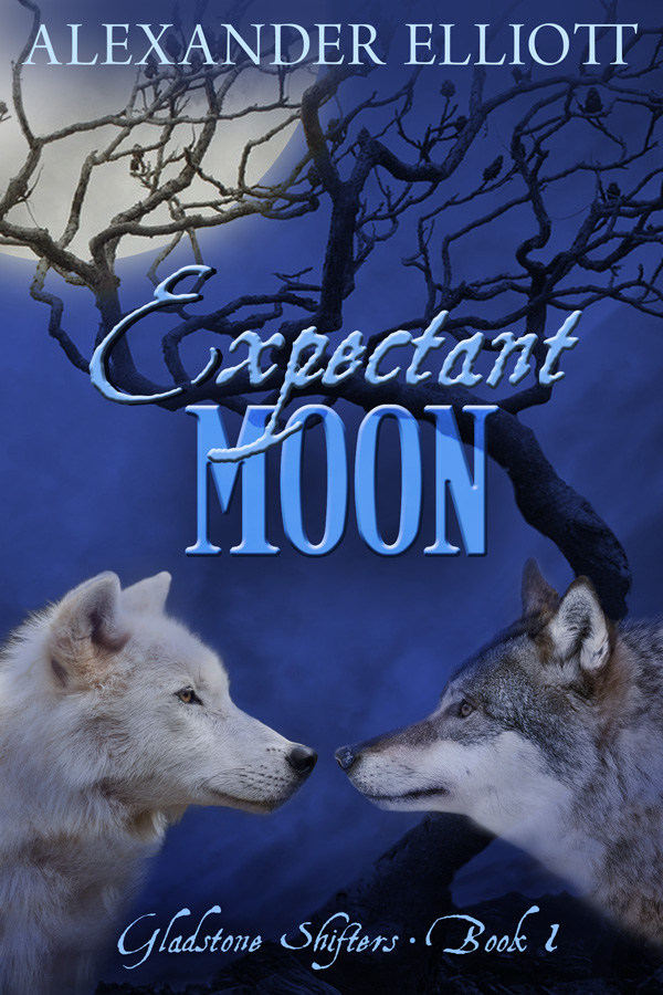 ExpectantMoon - Small sz