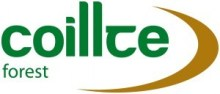 Coillte-forest-logo-large-300x128