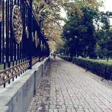 Fence of the White House