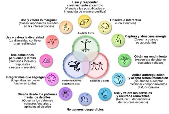 Principios de diseño en permacultura