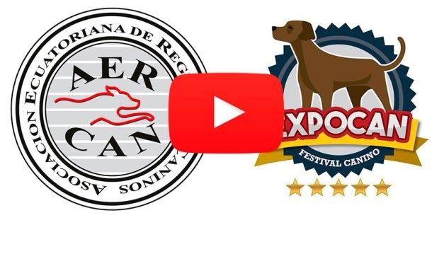 VIDEO EXPOSICION QUITO MAYO 2017