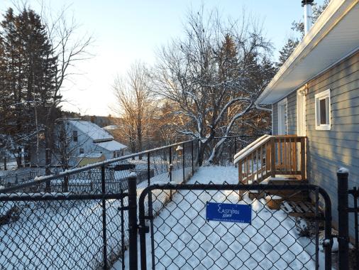 Jim & Cathi's Eastern facing yard at sun-up.