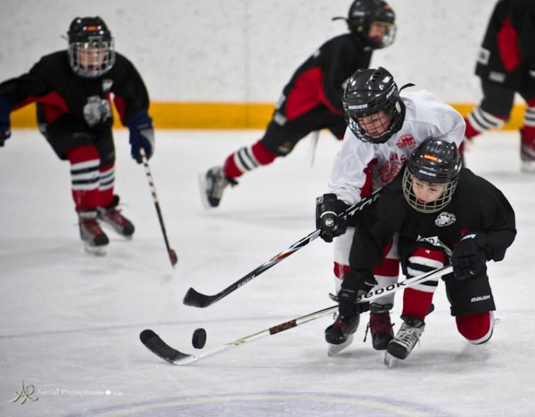 Image result for novice hockey