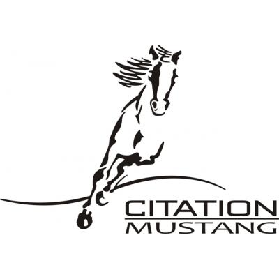 Cessna Citation Mustang Aircraft Decal,Sticker!