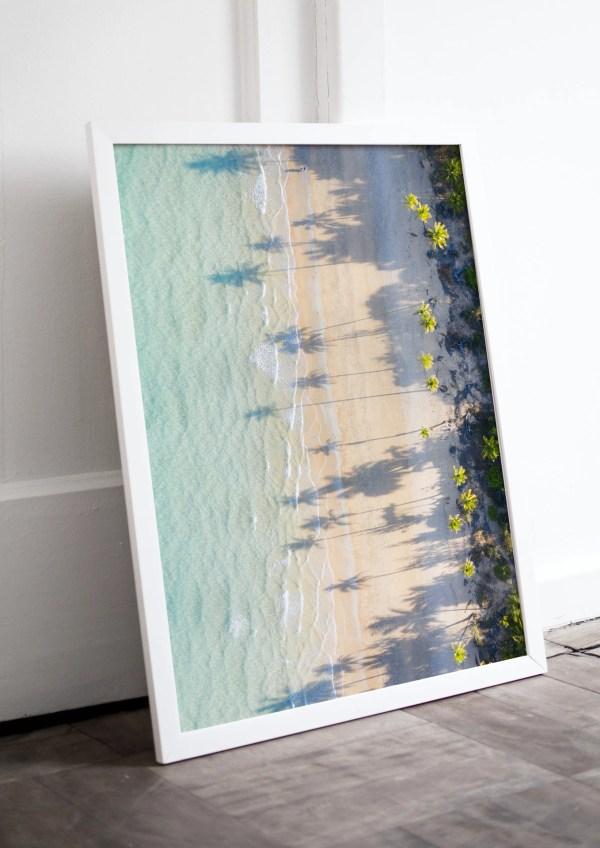 Tropical Palm Tree Beach Fine Art Print
