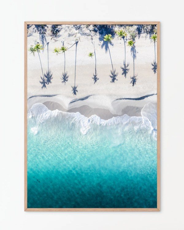 Tropical Palm Tree Wall Art Print