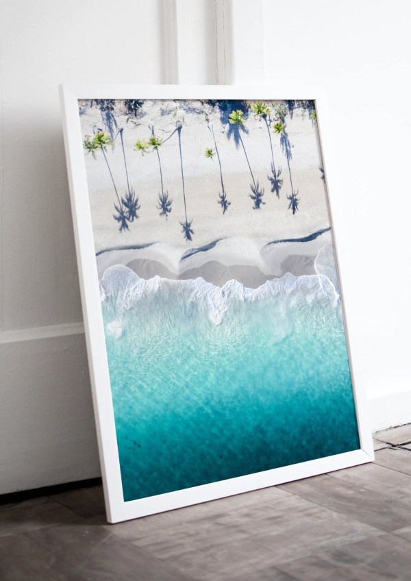 Palm Tree Photography Print