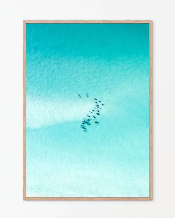 Pod of Dolphins Wall Art Print
