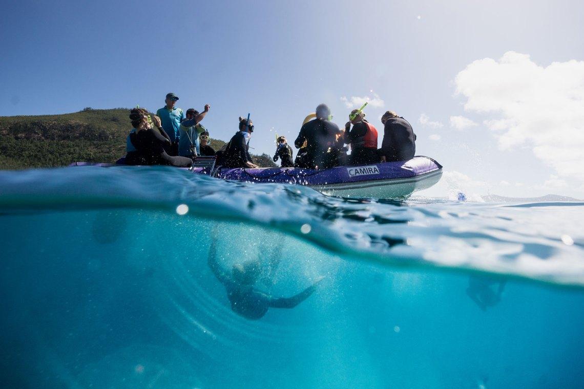 Whitsundays Snorkelling Group
