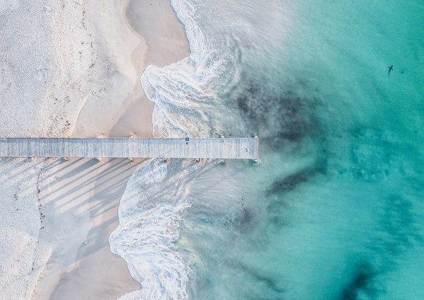Shark at Normanville Jetty in South Australia