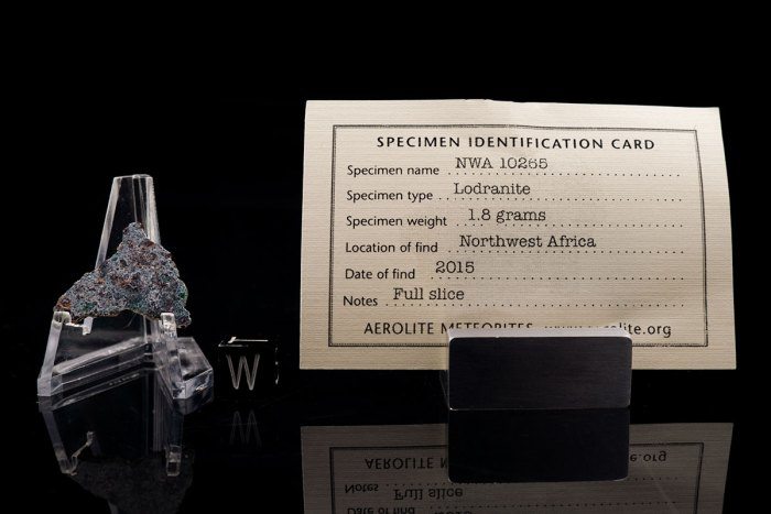 NWA 10265 lodranite with specimen card