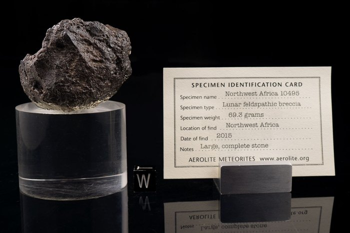 NWA 10495 69.3 Grams with specimen ID card
