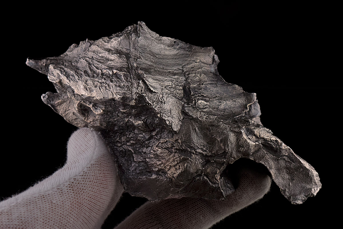 Sikhote-Alin 672.9 Grams