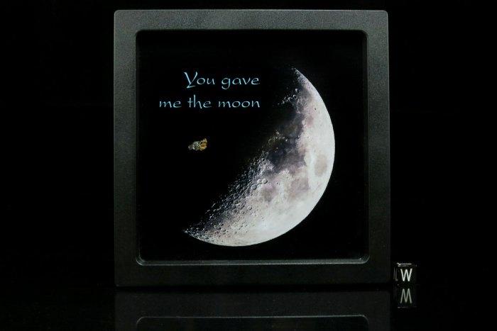 big-moon-membrane-box-ii