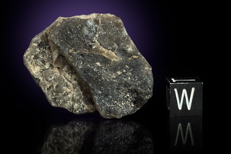 Darwin Glass 12.6 Grams