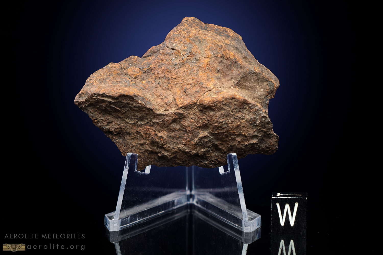 Gold Basin 64.5 Grams