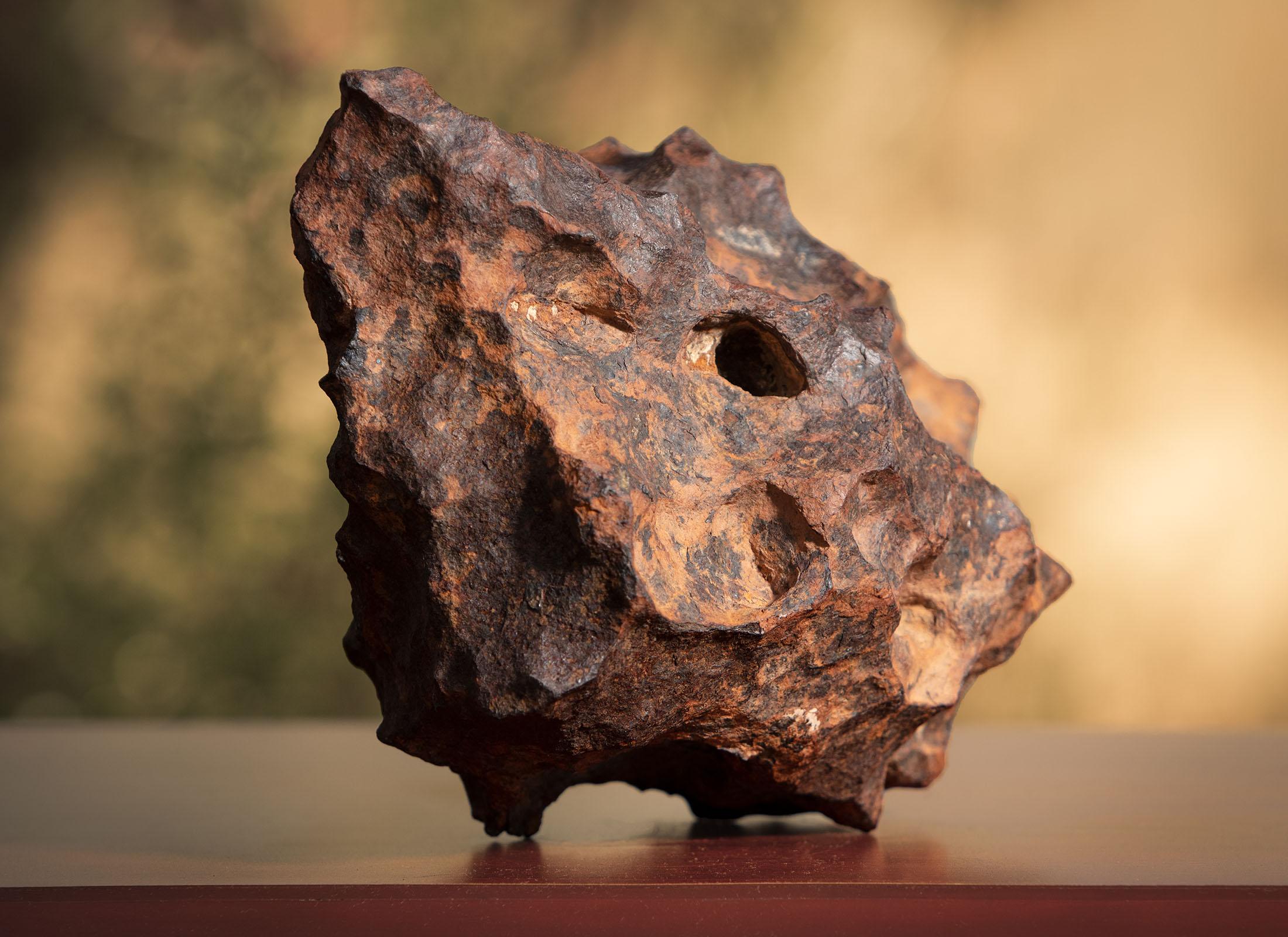 canyon diablo iron meteorite