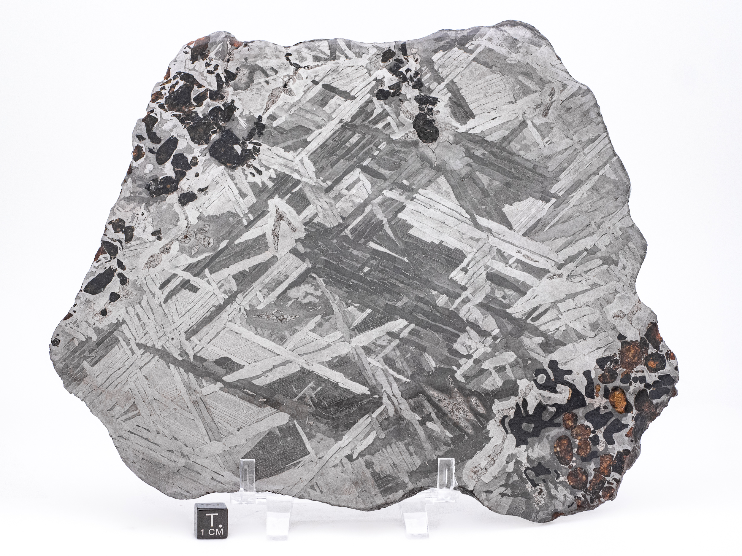 transitional seymchan pallasite