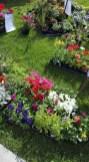 12438_fm-flowers.jpg