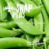16469_SugarSnapPeas.jpg