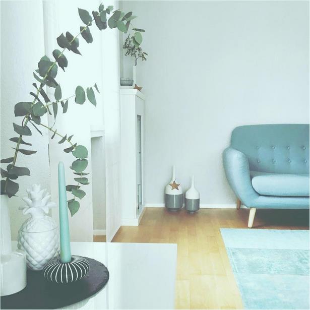 Luftreinigende Pflanzen Schlafzimmer | Aloe Vera Pflanze ...