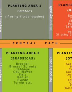 Typical plot layout of four areas for rotating annual crops also preparing  vegetable rh aeronvale allotments