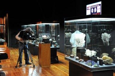 web-r-Museu-Geológico-Lisboa-Leopardo-FTR_3039