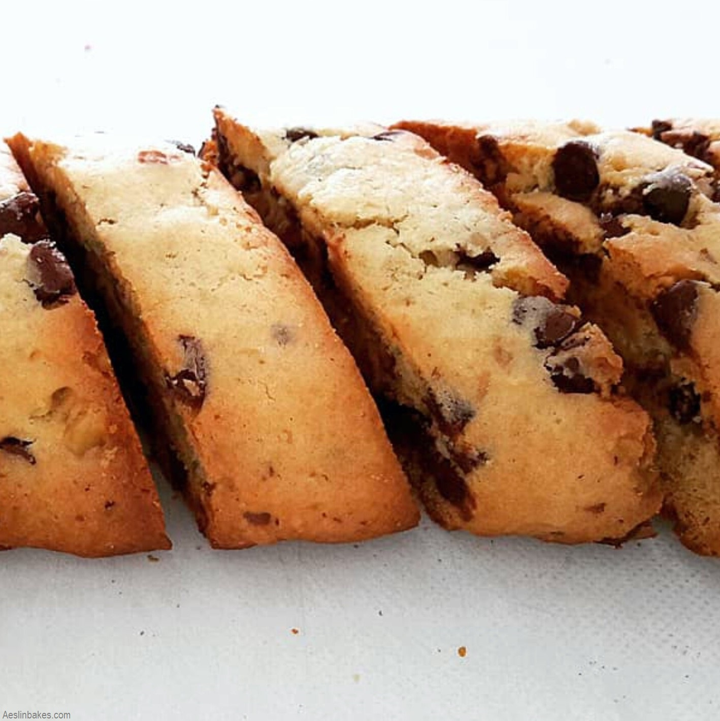 Chocolate Chip Walnut Biscotti evenly baked sq