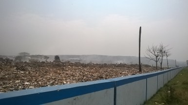 Figure 3. The garbage dump ground