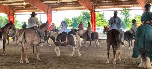 Many horses arena