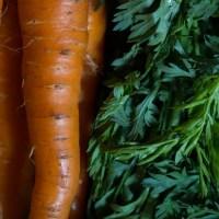 Zéro gaspillage : les fanes de carottes