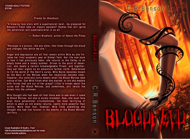 Cover for Bloodfeud by C. R. Benson