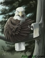 Even eagles need privacy to chirp on their Twitter account.