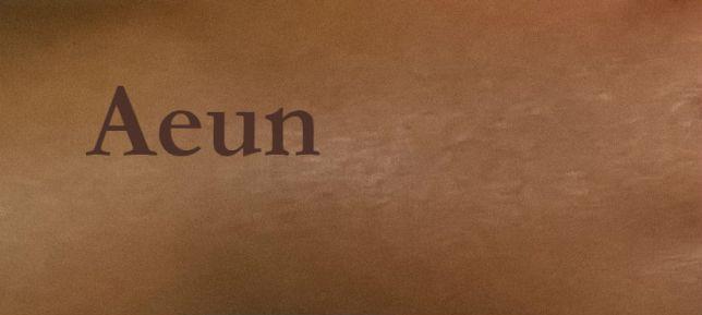 100-ways-to-write-aeun-47