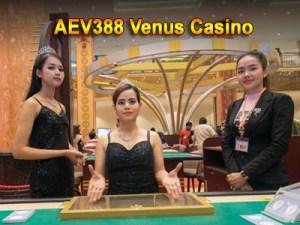 aev388 venus casino