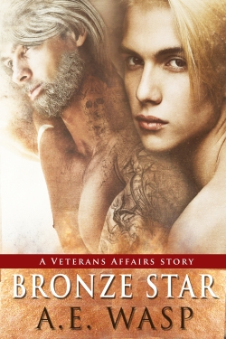 Bronze Star A veterans Affairs novel cover