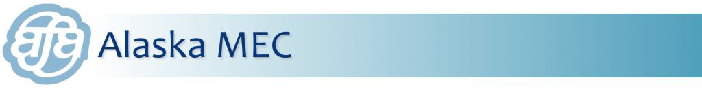 MEC Logo Banner