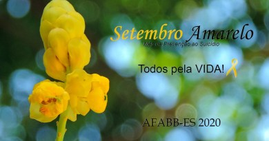 etembroamarelo_AFABBES2020