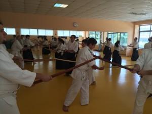 Asociacion para el Fomento del Aikido de Madrid - Afamadrid