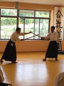 Asociación para el Fomento del Aikido de Madrid - Afamadrid