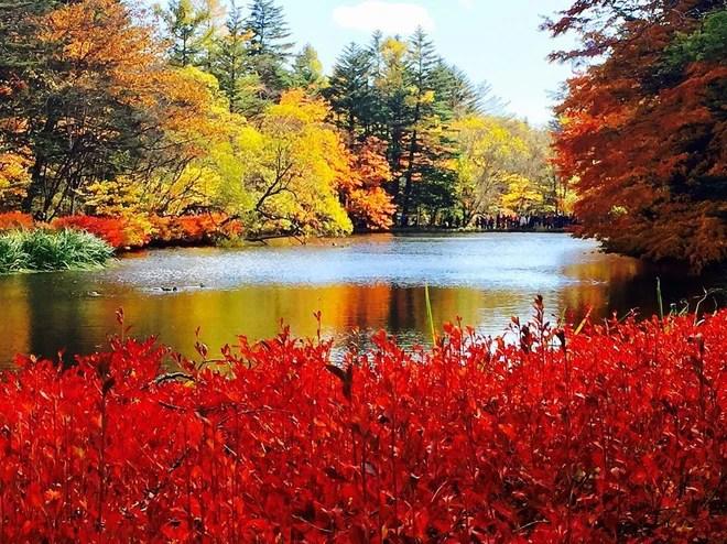 5 điểm đến mùa thu sẽ khiến bạn ngất ngây vì phong cảnh đẹp như trong mơ - Ảnh 11.