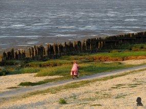 meisje op de fiets tijdens zonsondergang aan het Wad, 5-9-2013