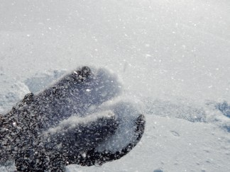 -Allison(snow!) 061 (1280x960)